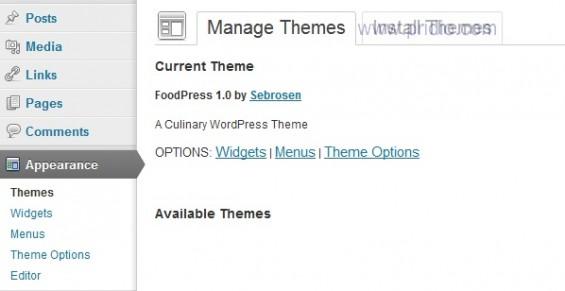 quản trị theme wordpress