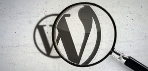Page và post wordpress Logo