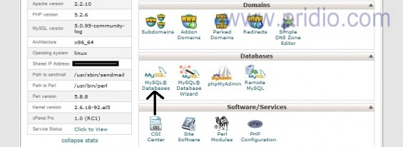 Restore SQL wordpress | my sql database
